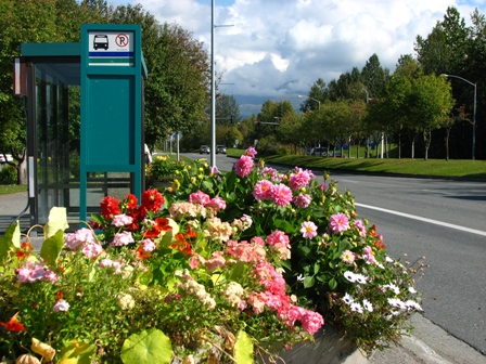 People Mover photo of bus stop with flowers